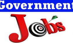 governmnet job